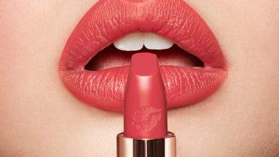 Lip Powder Market