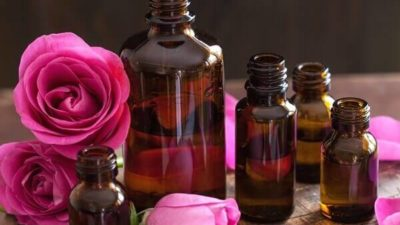 Rose Oil Market
