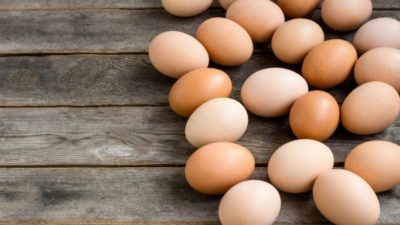 Egg and Egg Products Market