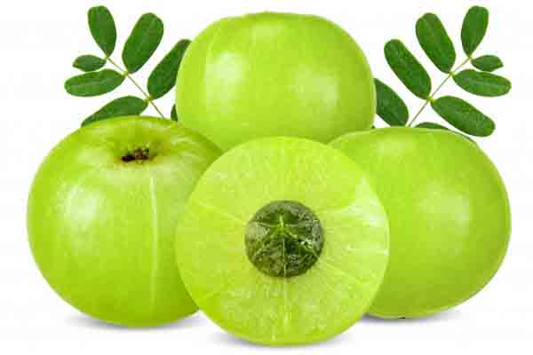 Global Amla Extract Market Size, Share, Growth | Industry Report 2029