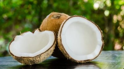 Coconut Derivatives Market