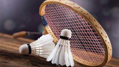 Badminton Racquet Market
