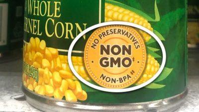 Non-GMO Food Market