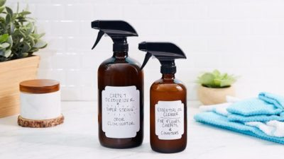 Pet Odor Control & Clean-up Products Market