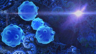 Stem Cells Market