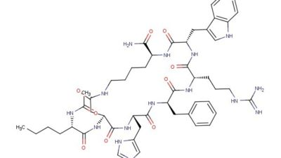 Peptide Synthesis Market