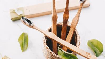 Bamboo Toothbrush Market