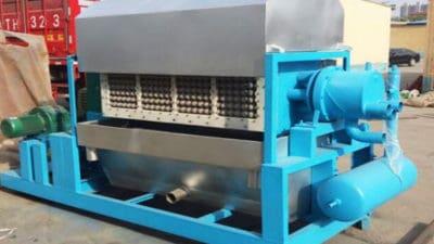Pulp Molding Machine Market