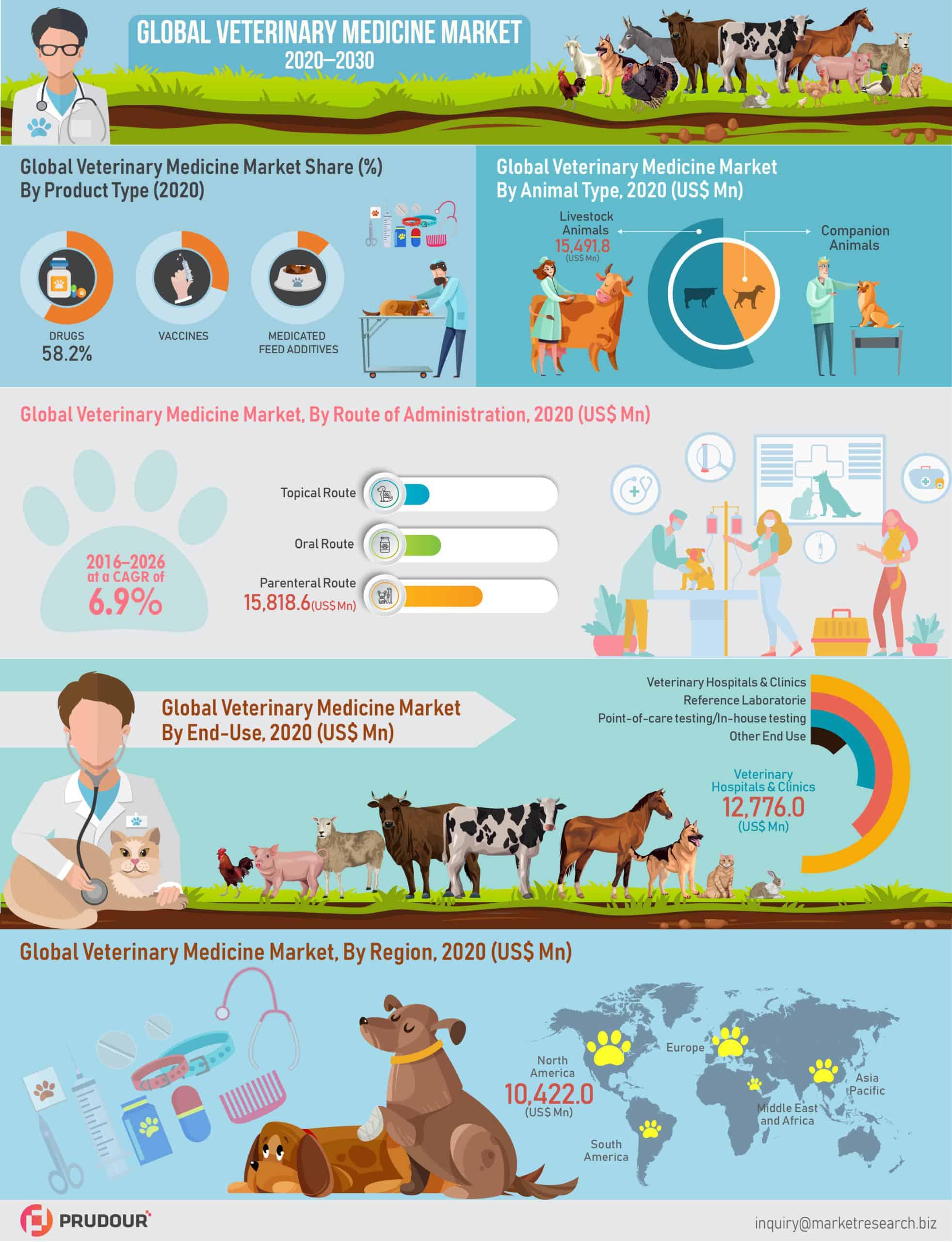 Global Veterinary Medicine Market Infographics